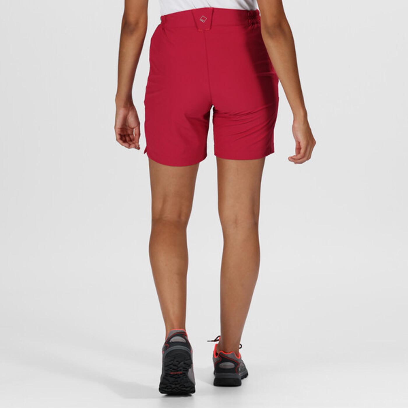 Funktionsshort Mountain Shorts Regatta - Damen